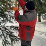 mocowanie karmnika do drzewa
