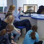 uczniowie na zajęciach o ptakach