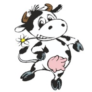 krowa Matylda